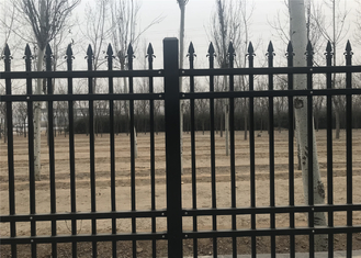 Coated Steel Garden and Park Fence 1200mm x 2400mm stain RAL 6005 color upright 25mmx25mm supplier