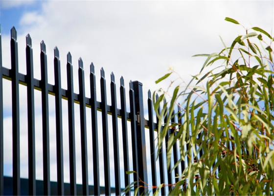 press point spear powder coated satin black steel fence 2100mm x 2400mm supplier