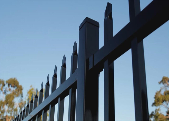 China Garrison Fence Heavy Duty Garrison Fence 1800mm height x 2400mm length stain black spear top fence supplier