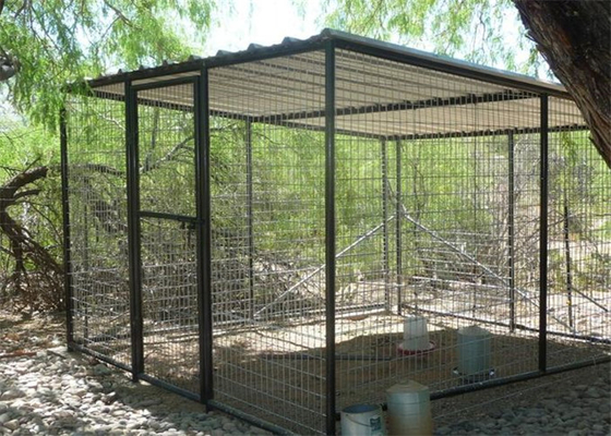 Bird Aviaries 25mm*50mm diameter 3.00mm
