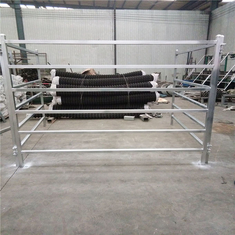 Cattle Panels 50mm * 50mm RHS * 1.6mm thickness