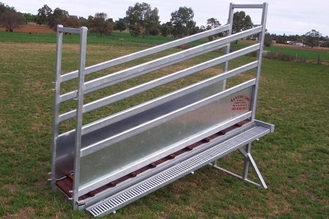 Hot-dipped galvanized sheep Loading Ramp