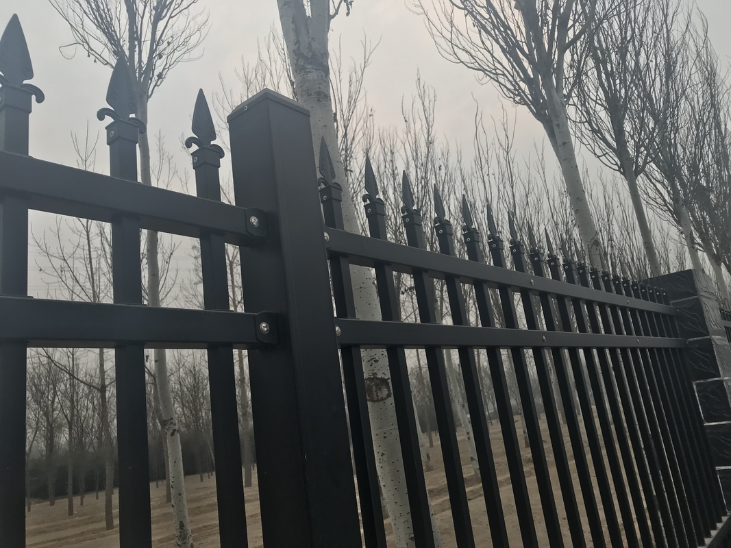 2.1m high x 2.4m width Steel Picket Fence Powder Coated Black Color China supplier supplier