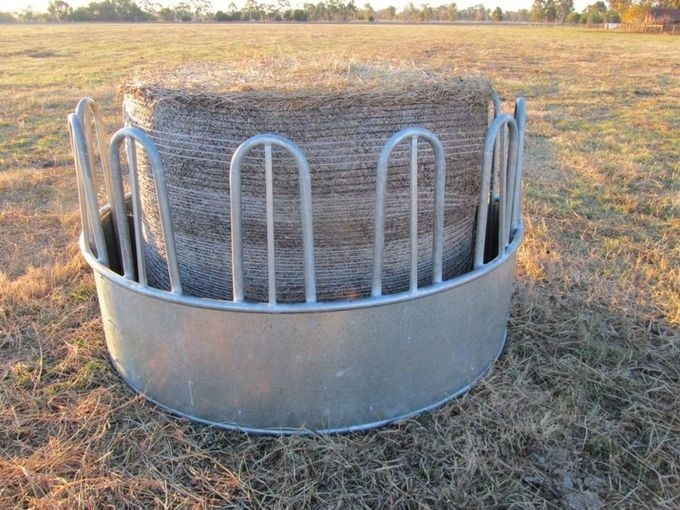 Round Bale Feeder Cattle