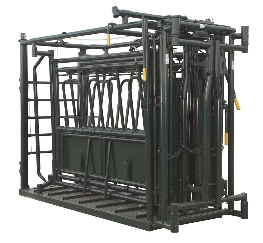 Single Squeeze Cattle Chute