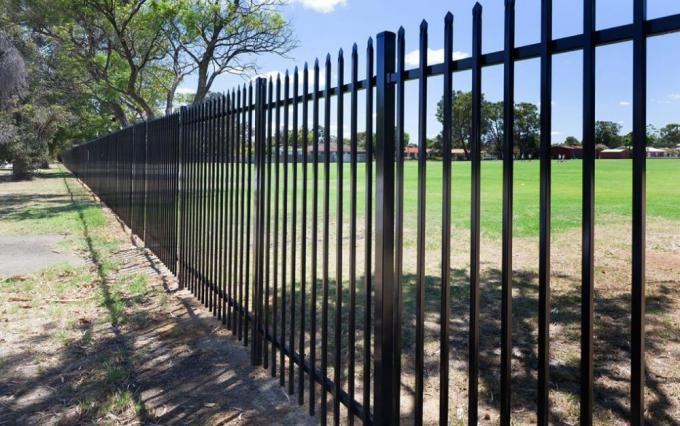 Powder Coated Ornamental Spear &Flat Top Security Steel tubular fencing